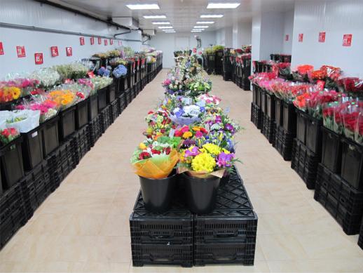 Букет орхидей оптовая база цветов в москве на рижской цены роз штука