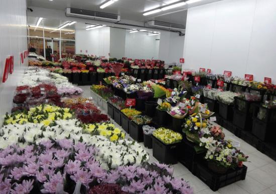 цветочные базы в москве недорого